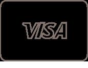 Visa card icon