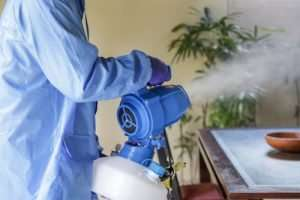 Where can I book a top-notch disinfectant fogging treatment