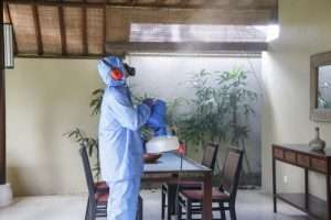 How to remove toxins from your home?